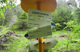 a_obsivanka